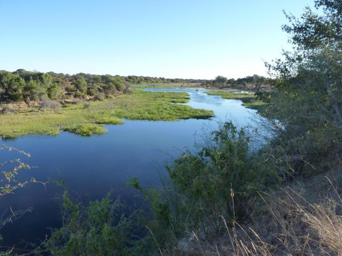 Boteti river 2014 2 P1090801 small