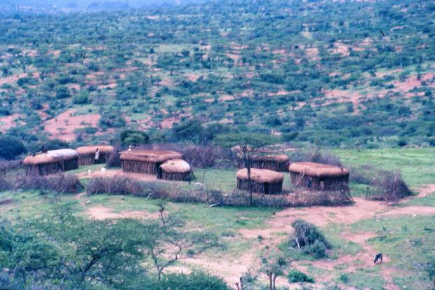 Samburu's manayatta (family settlement with huts and traditional spiny fence): Somewhere on the way to Isiolo.