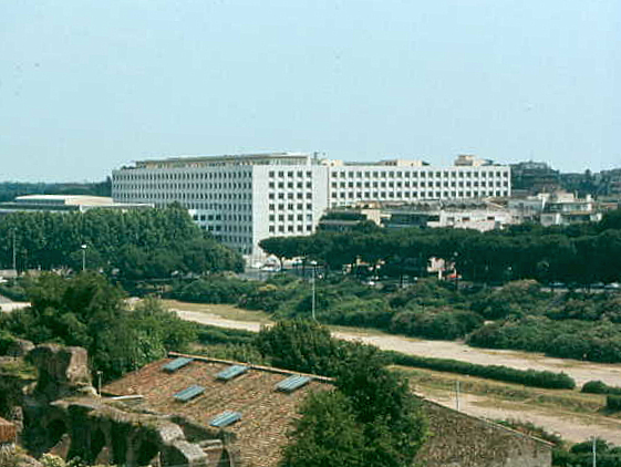 FAO Headquarters from the Palatine Forum.