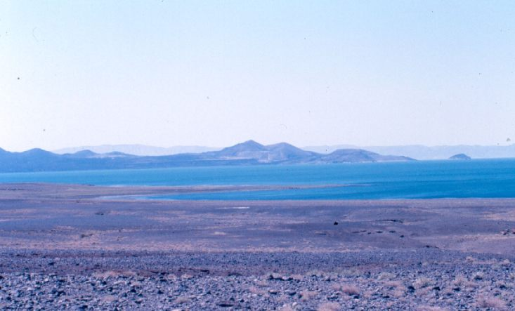 The first area of Kenya I saw: Lake Turkana. The picture was taken a few years later during a safari there.