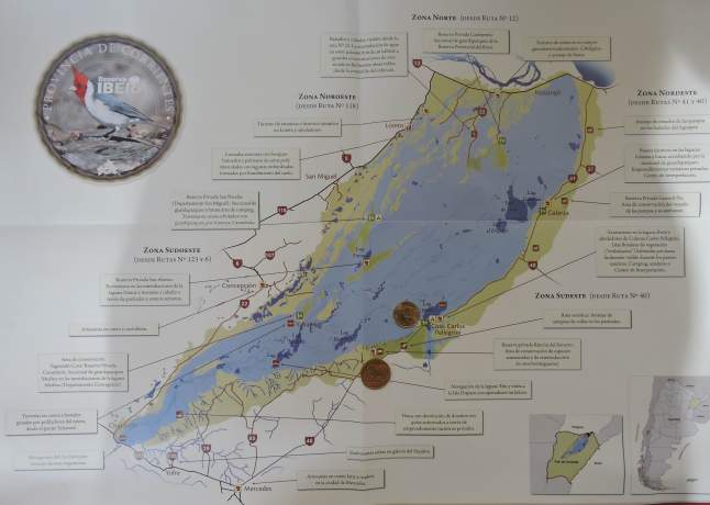 A general view of the Ibera wetlands. Capybara coin: Rincon del Socorro; Armadillo: Ibera lagoon.