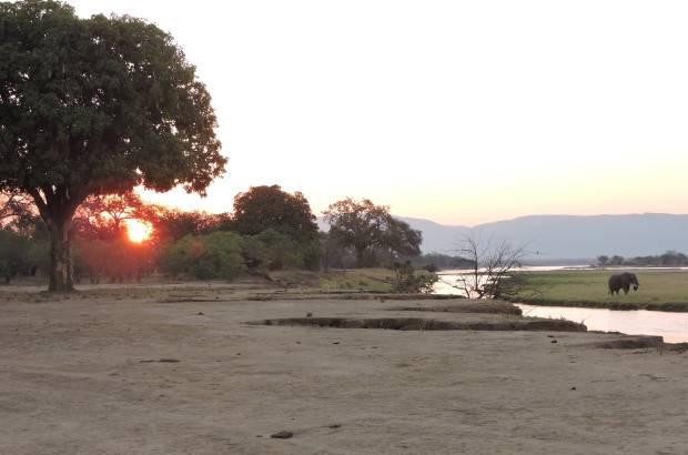Zambezi dusk.