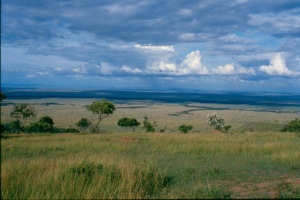 The view of the Mara triangle on the Maasai Mara from the Oloololo escarpment on the way to Intona ranch.