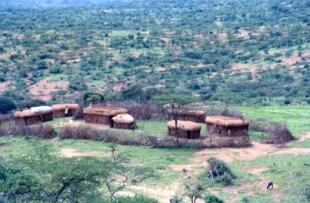 Maasai Manyatta (dwelling).
