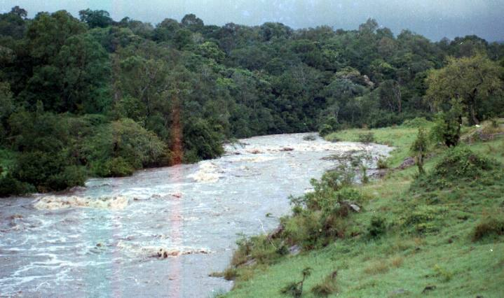 A flooded Migori river at the back of Intona ranch.
