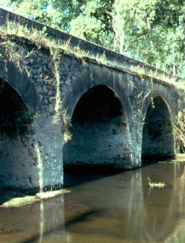 Camacho puente copy