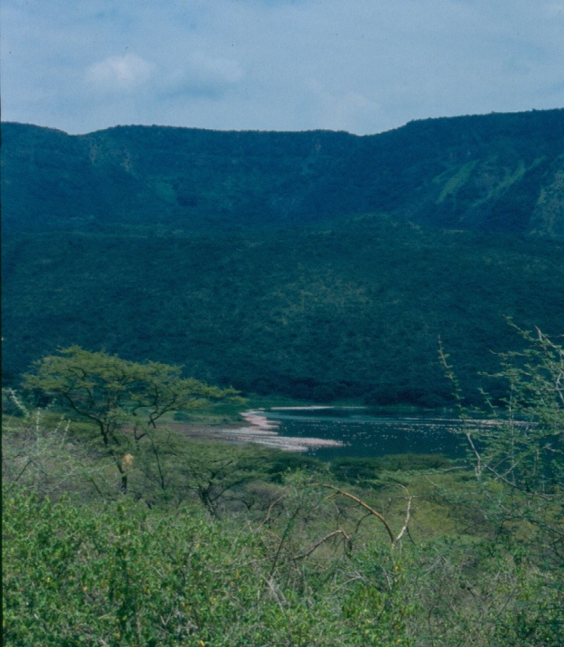Bogoria view from distance copy