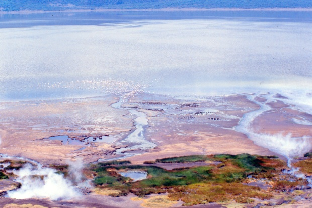 Bogoria view from top of circular rd.tif copy