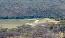 Bogoria view of youn flamengoes northern part.tif