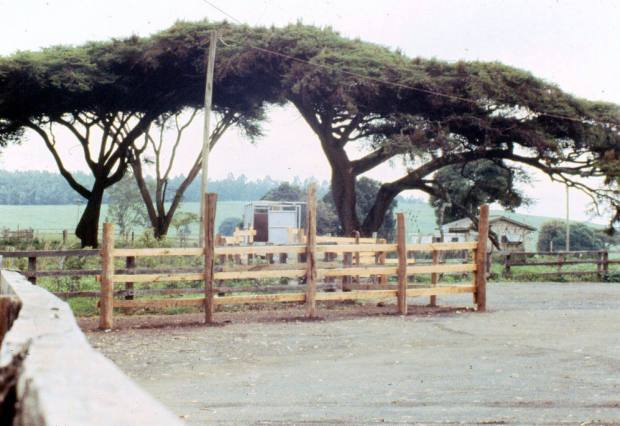 muguga isolation unit