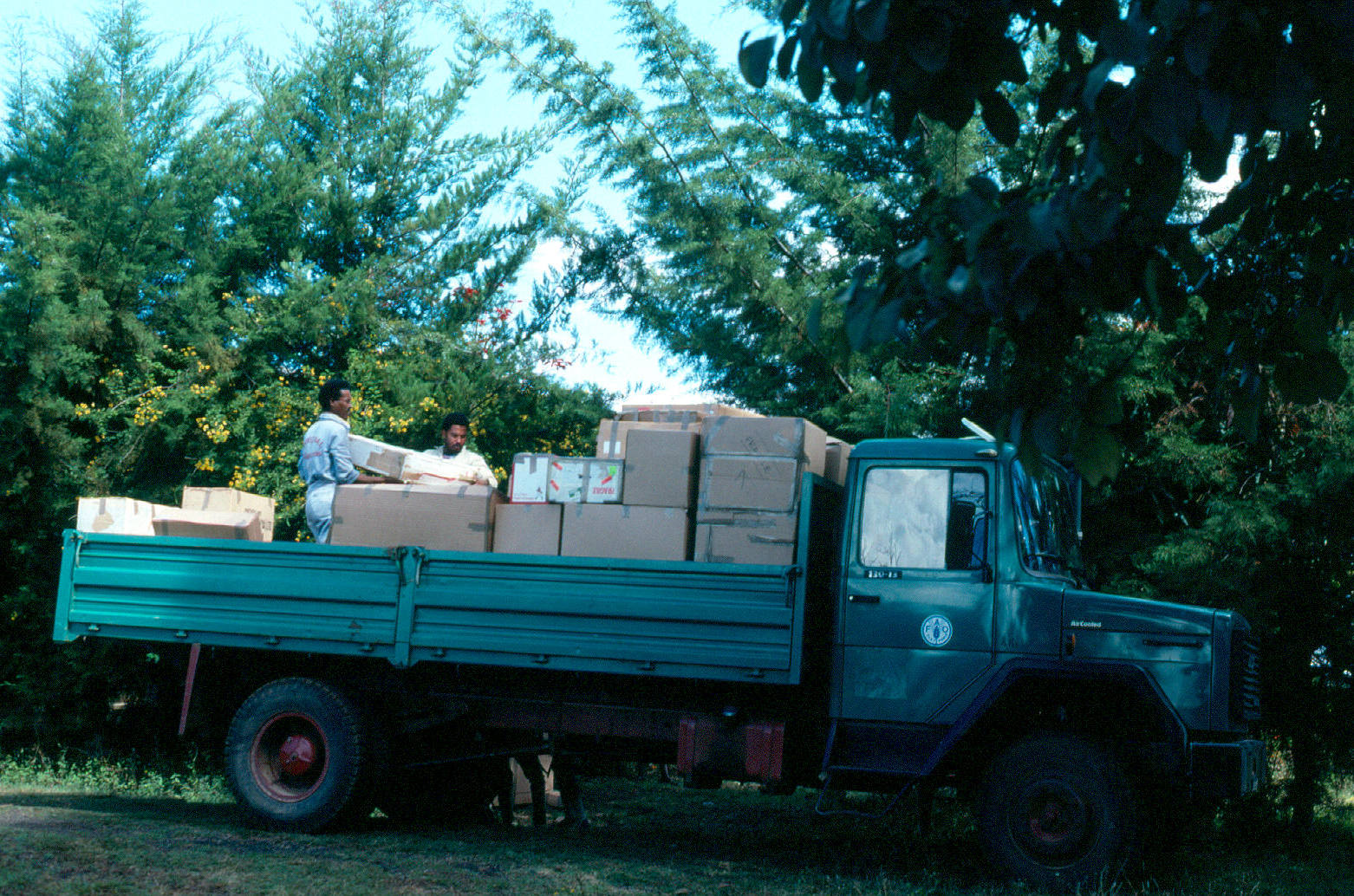 bedele-packing-fao-lorry