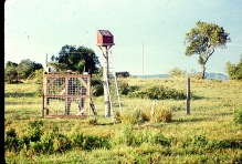 solar-powered-fence-tif