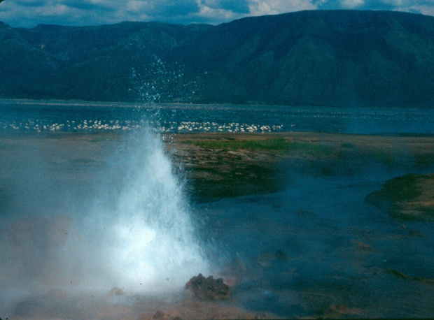 Bogoria hotsprings.tif 8.11.45 AM copy