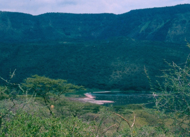Bogoria view from distance 2.tif 5.30.23 PM 5.30.51 PM copy