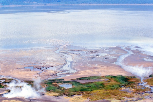 Bogoria view from top of circular rd.tif 1.23.58 PM copy