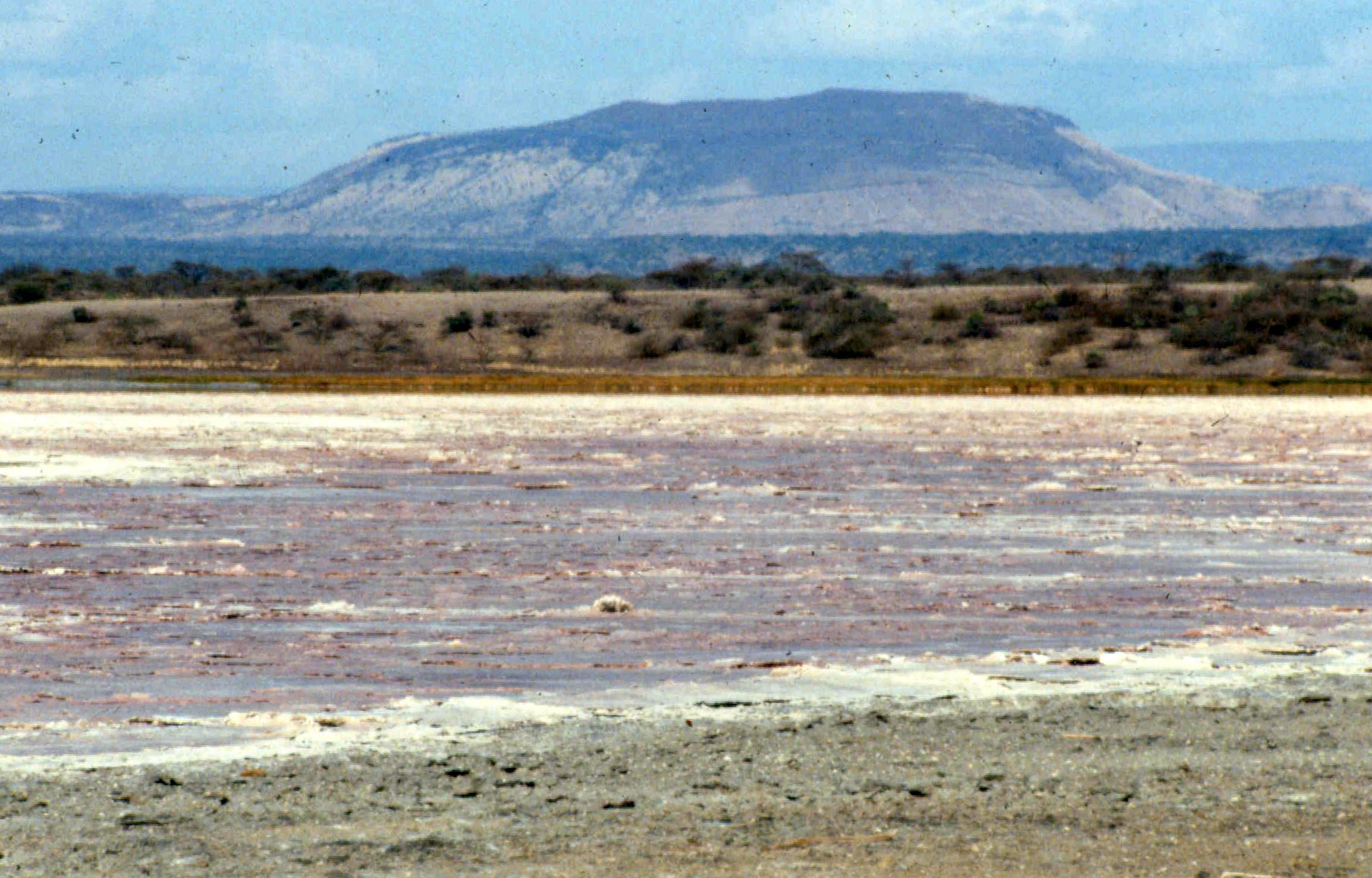 Magadi landscape 1