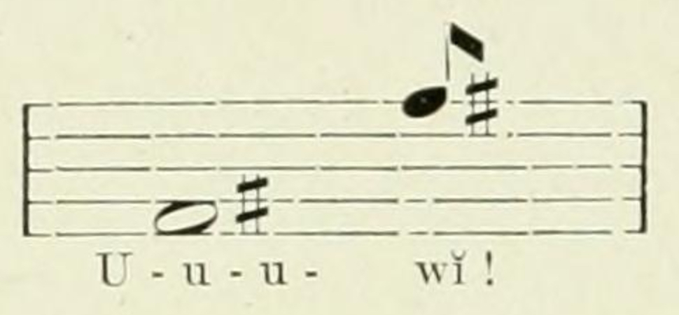 Crocuta_crocuta_whoop_notation copy By Johnston, Harry Hamilton, Sir, 1858-1927 - The Uganda protectorate, Public Domain, https-::commons.wikimedia.org:w:index.php?curid=23401588