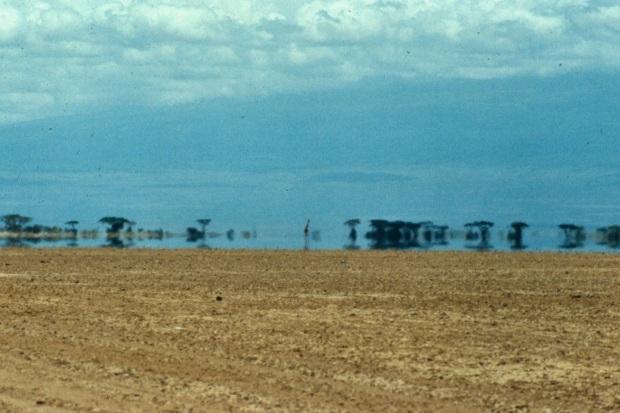 Amboseli dry lake and giraffecopy