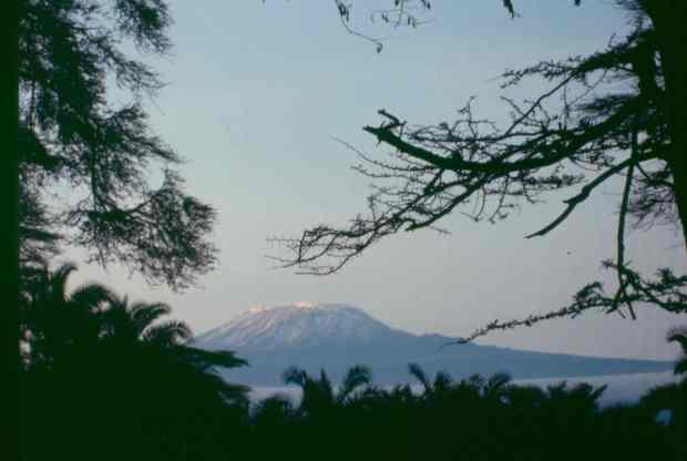 Amboseli kili 1