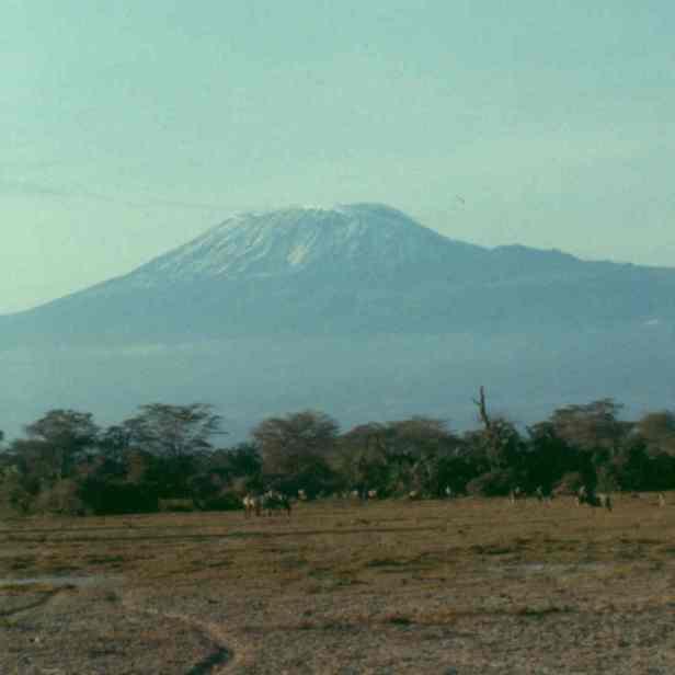 Amboseli kili 2