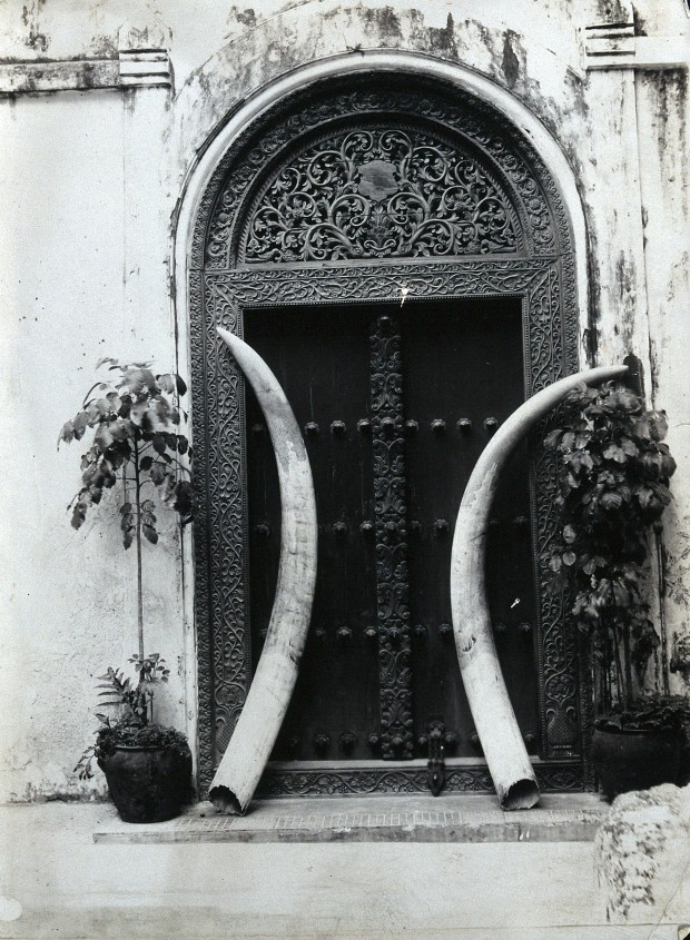 V0048591 An ornate carved doorway in Zanzibar, with an enormous pair