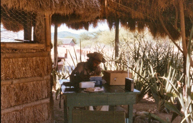 jj writing phd bushwhakers