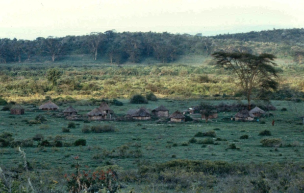 l naivasha group ranch west shore