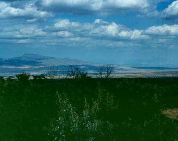 rift valley suswa...