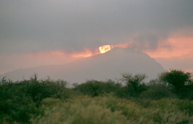 Sunset Tsavo W like fire copy